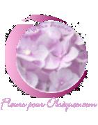 MARTINIQUE FUNÉRAL FLOWERS